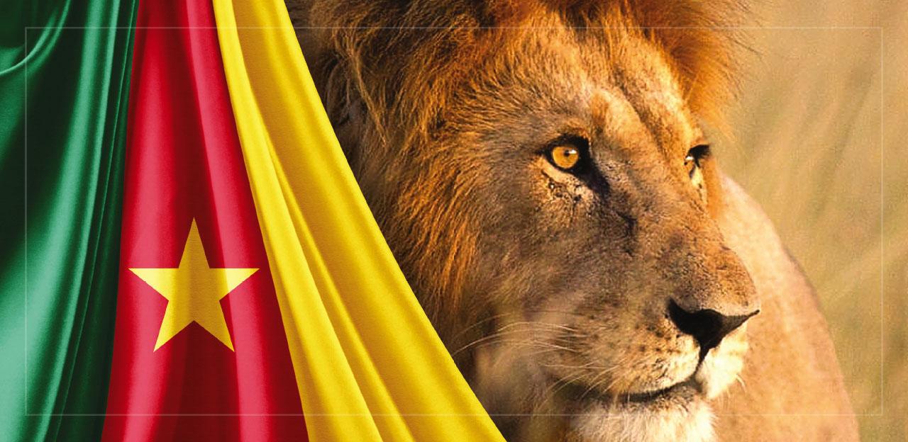 53-cameroon-lion-penresa