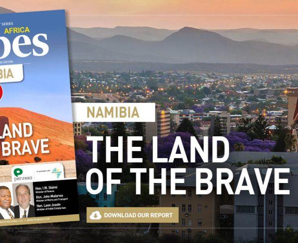 80-Namibia-land-brave-Penresa-download