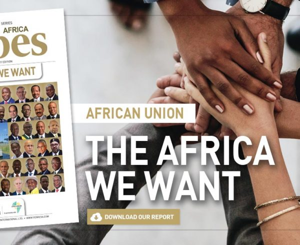 86-AFRICAN-UNION-The Africa-we-want